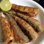 Indian Oil Sardines (Tarli) Fry